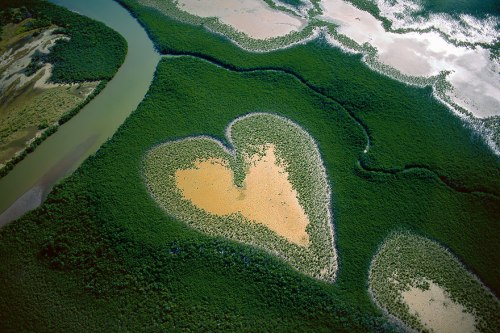 birds-eye-view-aerial-photography-13-mangroves-in-new-caledonia